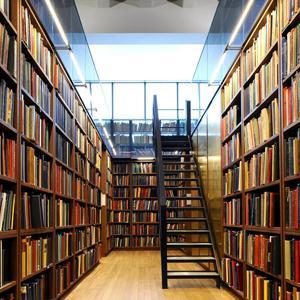 Библиотеки Щекино